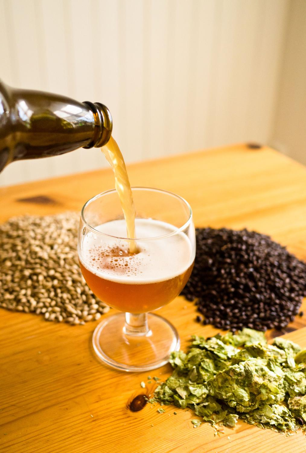 The Beer-Changing Magic of Brewing with Hops
