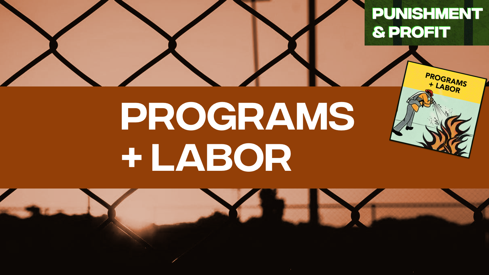 Punishment & Profit: Programs & Labor