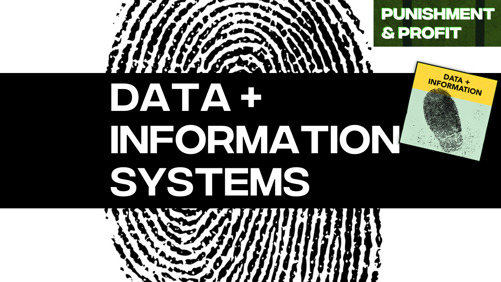 Punishment & Profit: Data and Information Systems